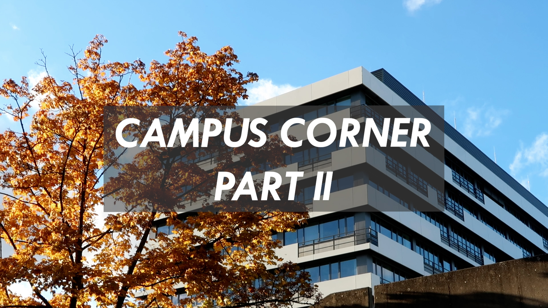 campus-corner-part-ii-now-online